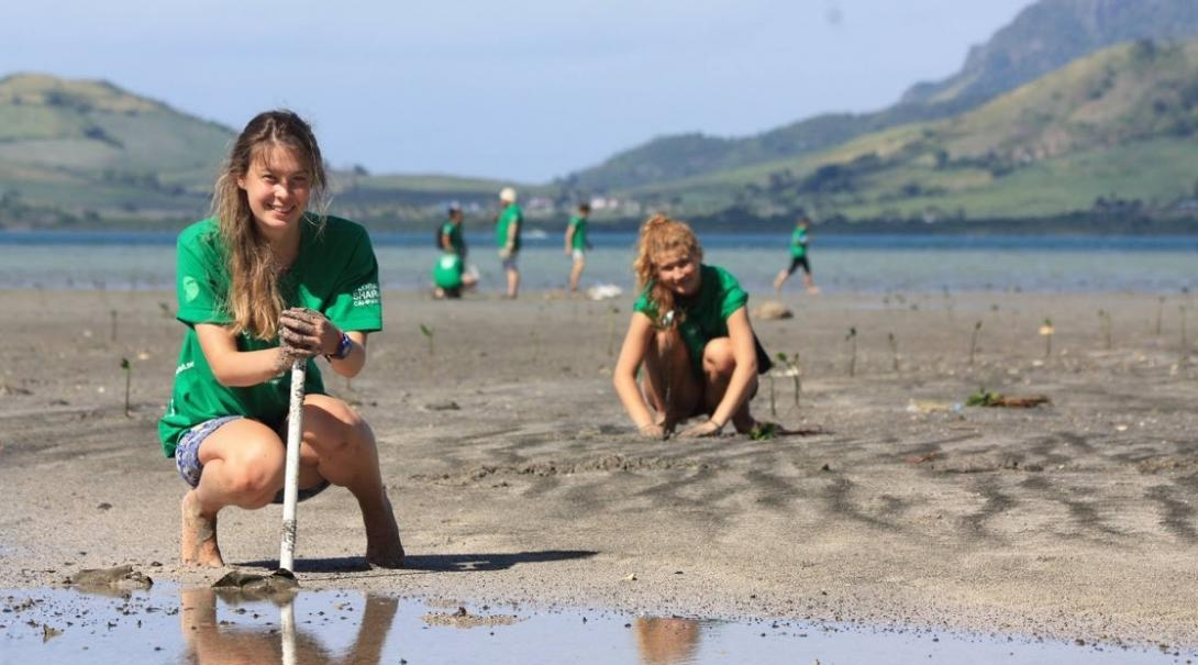Volunteers are pictured planting mangroves as part of their shark conservation volunteering in Fiji with Projects Abroad.